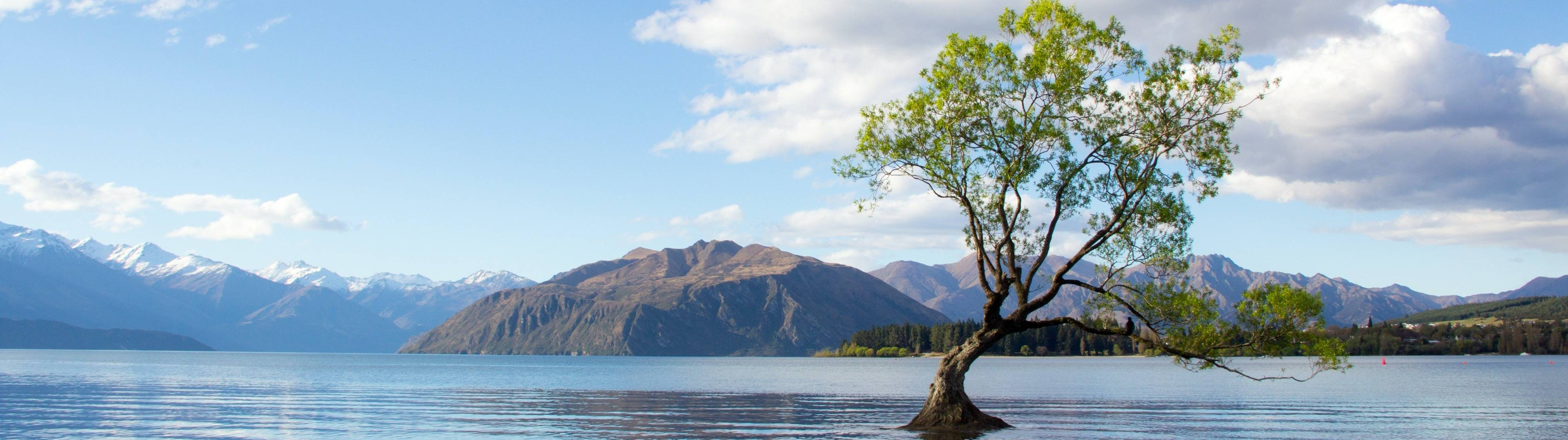 Reiseplaner World and Travel Neuseeland
